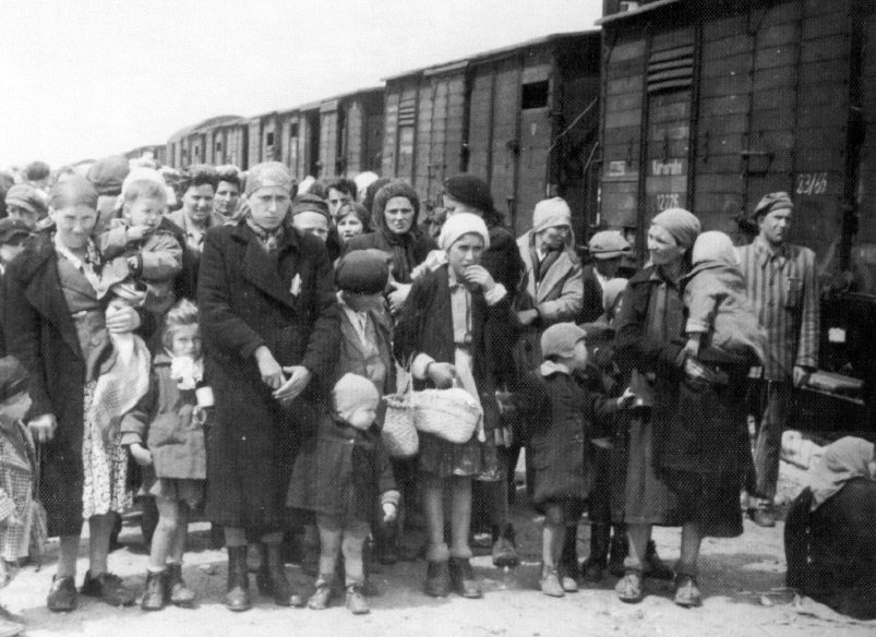 117 cejia roma deportation