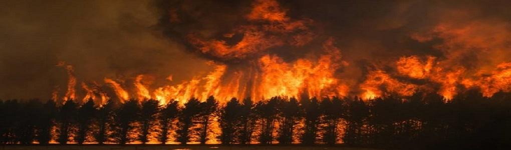 Μεγα-πυρκαγιές Αυστραλίας: Ένα κλιματικό «tipping point» μπροστά στα μάτια μας
